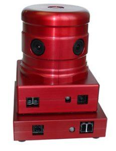 ladybug2-1-231x300