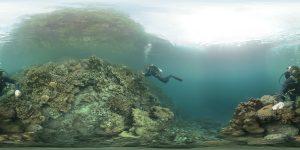 Friday_UWRIG_Dive2_Clifp-1-c08-300x150