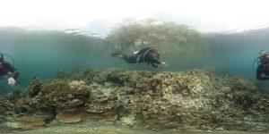 Friday_UWRIG_Dive2_Clip-1-c00-300x150